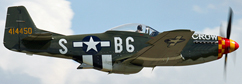 North American P-51D Mustang profile